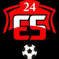 24Erzincanspor club logo