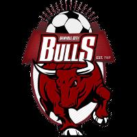Banyule City club logo