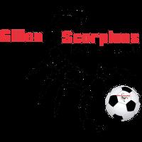 Gillen Scorpions SC clublogo