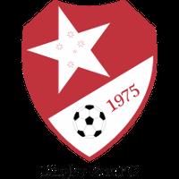 Dingley Stars FC clublogo