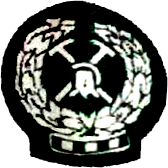 Zimamoto SC club logo