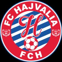 Hajvalia club logo