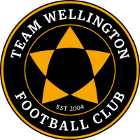 Team Wellington FC logo