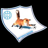 Gorno Lisiče club logo
