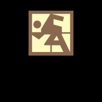 Shatin SA club logo