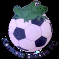 Konkola Blades club logo