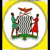 Nat. Assembly club logo