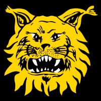 Ilves club logo
