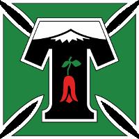 CD Temuco logo
