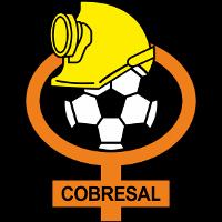 CD Cobresal logo
