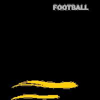 Stade Montois Football logo