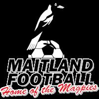 Maitland FC clublogo