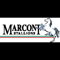 Marconi Stall.