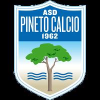 Pineto Calcio club logo