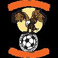 Muswellbrook FC clublogo