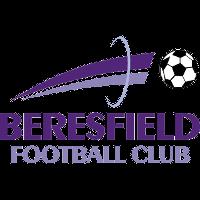 Beresfield FC clublogo