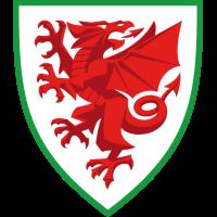 Wales club logo