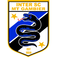International SC clublogo