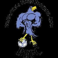 Brindabella Blues FC clublogo