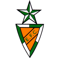 Estrela de VN clublogo
