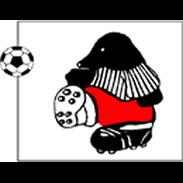 KVV Rauw Sport Mol clublogo