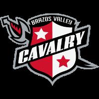 logo Brazos Valley