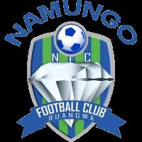 Namungo club logo
