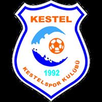 Kestelspor logo