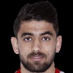 Profile photo of Peiman Babaei