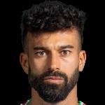 Ramin Rezaeian Profile Photo